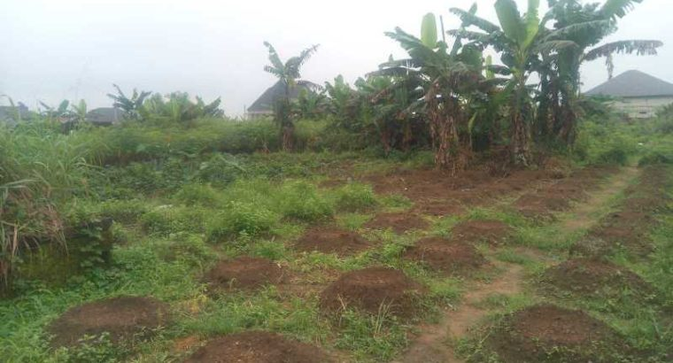 2.6 PLOTS OF LAND FOR SALE