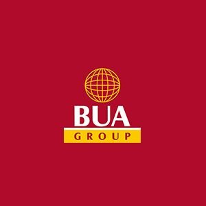 BUA Group acquires majority stake in P.W Nigeria