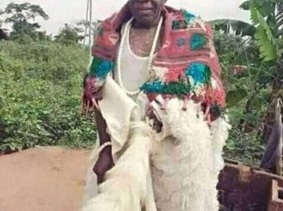 The powerful native doctor in Nigeria 08076830429