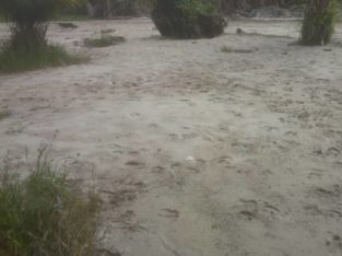 SAND FILLED LAND FOR SALE IN A DEVELOPED ENVIRONME