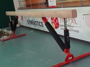 Dealers for Gymanstics Equipment