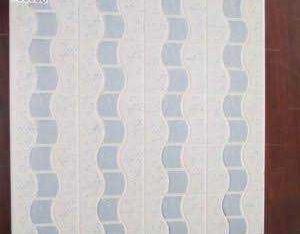 goodwill ceramic tiles (floor/wall)