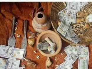 BUSINESS TRADITIONAL HEALER IN SOUTH AFRICA