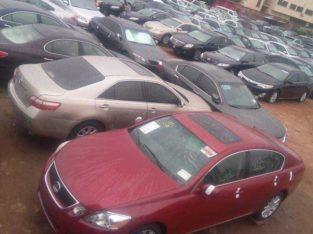 Nigeria Custom Services Auction
