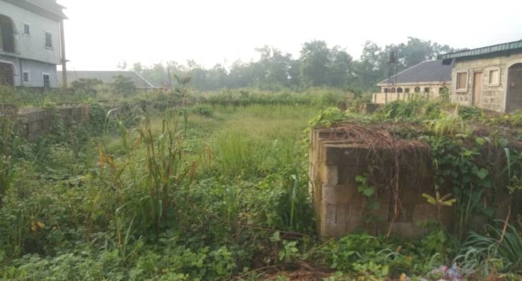 100ft by 100ft 4 Sale in Ughelli
