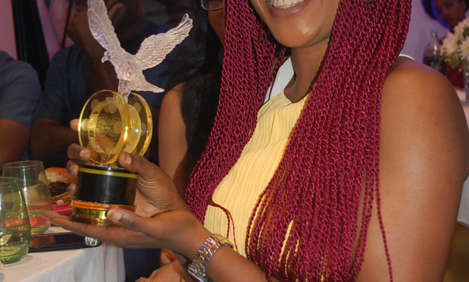 NOLLYWOOD ACTING & MODELING DIRECT ENTRY FORM