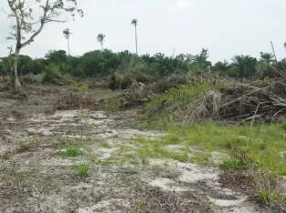 Land for sale in Newton Park Estate Ibeju-lekki