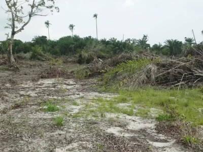 Land for sale in Newton Park Estate Ibeju-lekki