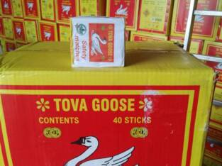 Tova Goose Matches